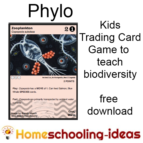 Phylo - kids trading game