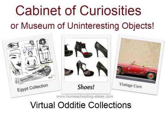 Cabinet of Curiosities for teenagers