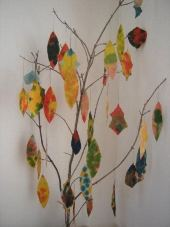 Home Schooling Science - Fall Tree