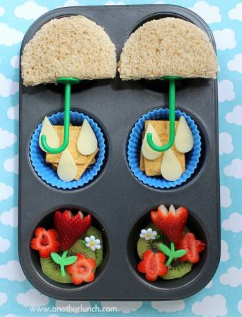 Muffin Tin Meals