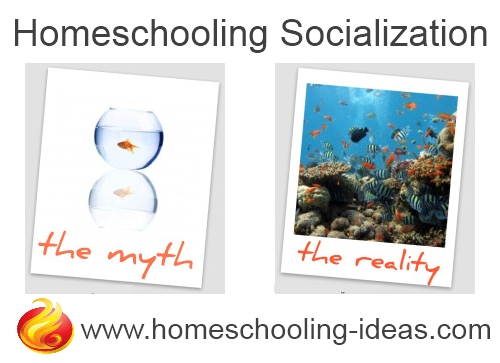 Homeschool Socialization - myth vs reality