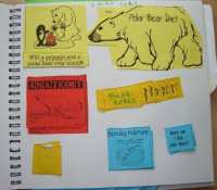 Lapbooks - Polar animals