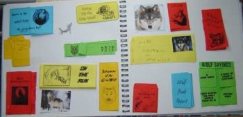 Lapbooks - Wolf Lapbook