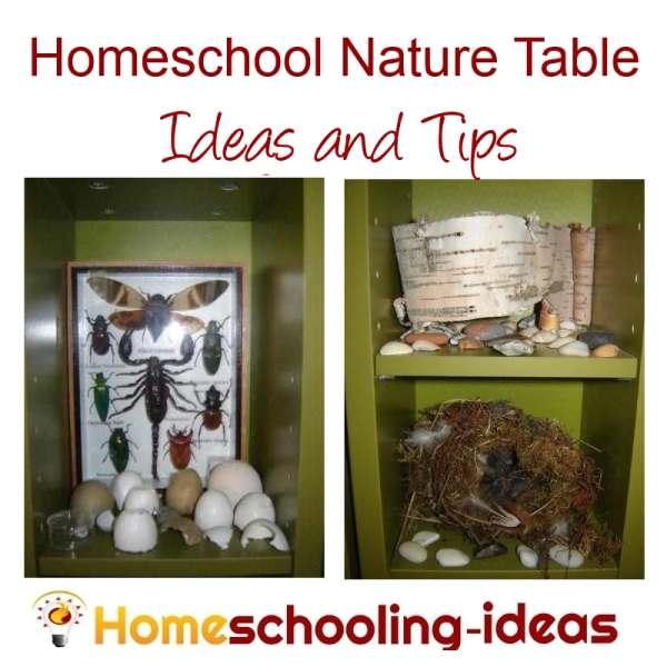 Homeschool Nature Table