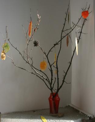 The Seasonal Tree