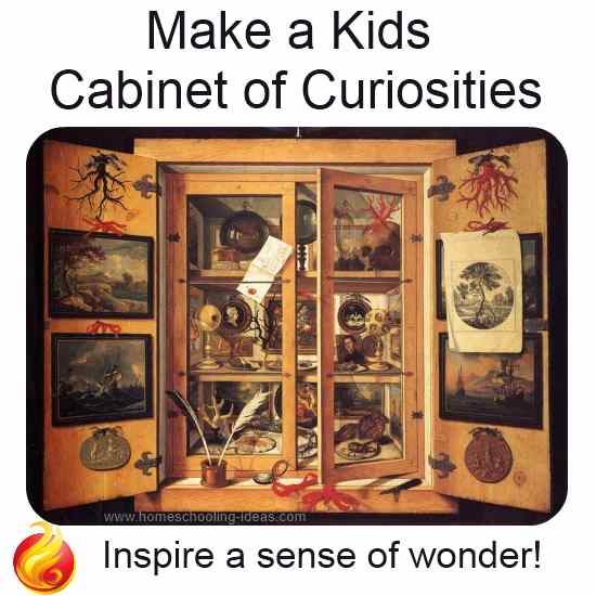 Kids Cabinet of Curiosities
