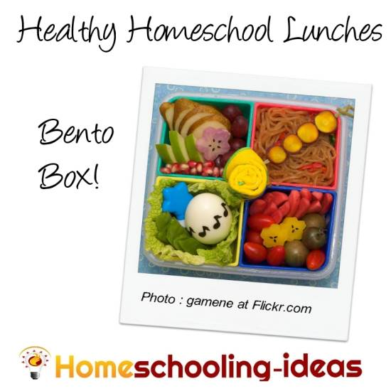 Healthy homeschool bento box lunches