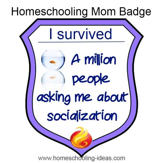 homeschool socialization survival badge