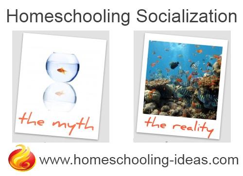 Homeschool Socialization - myth vs reality