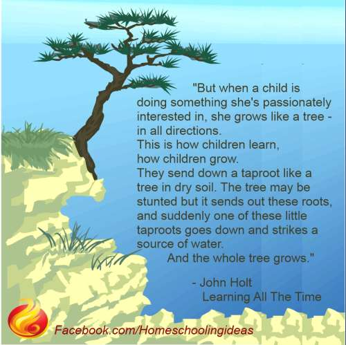 John Holt Quote - When a child is doing something she is passionately interested in..