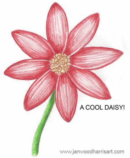 Step 5 - how to draw a daisy