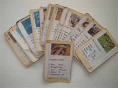 make a card game