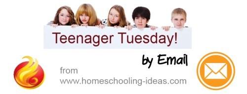 Homeschool High School Ideas by email