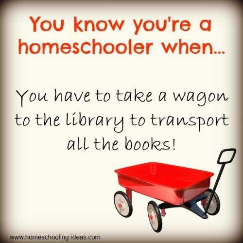 You know you're a homeschooler when